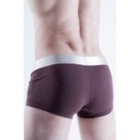 Calvin Klein boxer steel   brown