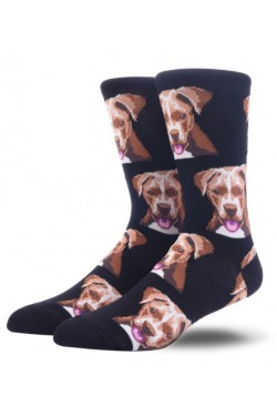 Мужские носки с собаками